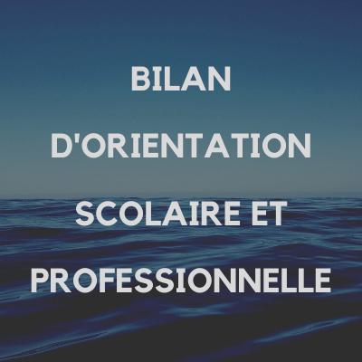 bilan_orientation_scolaire_professionnelle_benedicte_pochulu_pays_basque_64
