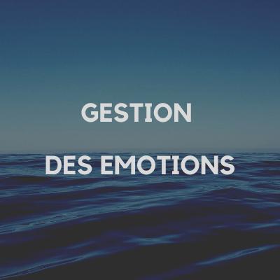 gestion_emotions_benedicte_pochulu_pays_basque_64