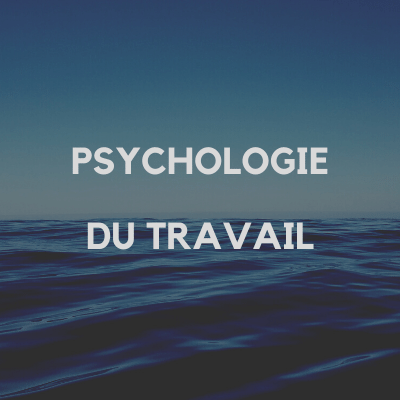 psychologie_travail_benedicte_pochulu_pays_basque_64
